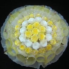 Hoa Ruy Băng V04